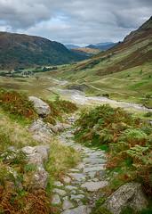 Path to Styhead Ghyll (HelenBushe) Tags: seathwaite lakedistrict cumbria nwengland fuji 100s hdr nationalgeographic styheadghyll borrowdale fells lakeland