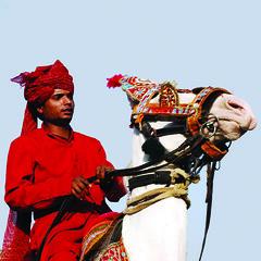 100309 Red Camel Rider (BavarIndia) Tags: asia tika