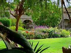 September at the Mission (Bennilover) Tags: flowers arches missions california missionsanjuancapistrano september cloisters strawberrytree aloes green mexicansage purple aloe plants roses