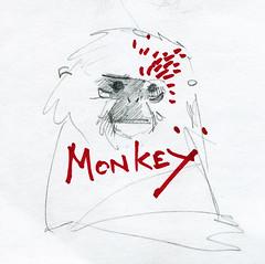 Aap schetsje (Rik Wielheesen) Tags: illustration monkey sketch ape rik aap illustratie schets wielheesen
