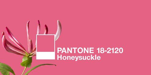 7573.Pantone_2D00_Honeysuckle_2D00_Color_2D00_Code