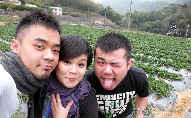 大湖草莓之旅 - 大力推薦 大山農園 DSCN8870