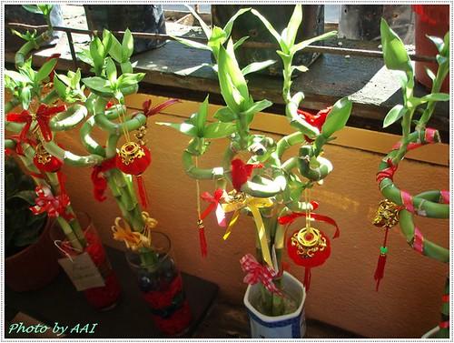 CNY bamboo deco