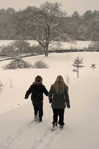 February Snow 5