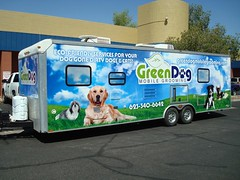 Green Dog Grooming Wrap