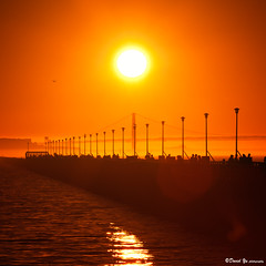 Golden Gate Bridge sunset moment (davidyuweb) Tags: sanfrancisco california bridge sunset usa marina golden berkeley gate san francisco alcatraz moment sfbay sfist