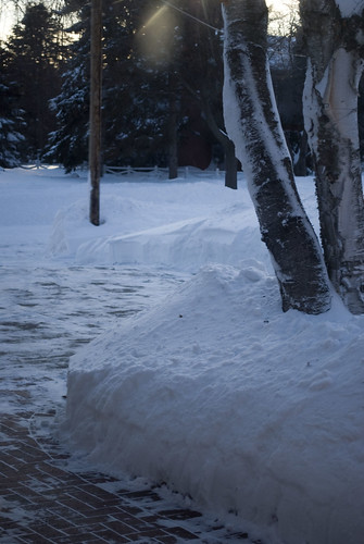 36 Snow. We have it.