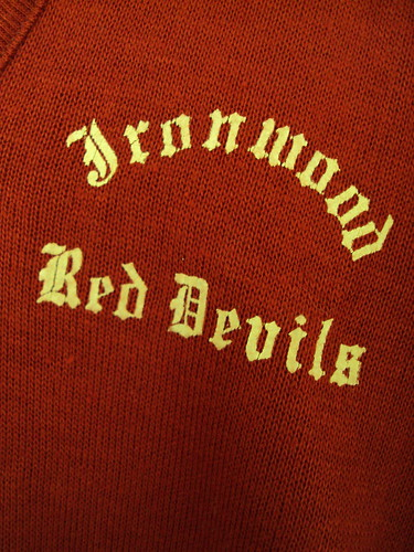 Vintage Ironwood Red Devils Sweater (detail)