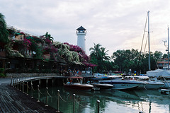 A Port in The Morning (The Lost Egyptian Mau) Tags: trip travel port landscape thailand island harbor phuket 风景 旅行 sights flim rollei35 fujisuperiaxtra400 泰国 普吉岛 富士 海岛 港口 胶片 禄莱