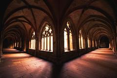 cross-coat (Dennis_F) Tags: light abbey zeiss deutschland licht shadows sony wide hallway monastery architektur fullframe dslr ultra schatten ssm kloster 1635 uwa weitwinkel kreuzgang ultrawideangle maulbronn uww a850 163528 sonyalpha sonydslr vollformat crosscoat zeiss1635 sal1635z cz1635 sony1635 dslra850 sonya850 sonyalpha850 alpha850 sonycz1635