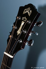 Guild D50 Headstock (jmaurophoto) Tags: d50 guitar acoustic strings musicalinstrument madeinusa acousticguitar frets dreadnought photogrpahy photogrpaher westerlyri tuningkeys steelstrings atlantaphotographer guildacousticguitar dreadnoughtguitar guildd50 guildd50dreadnought aroadbiker jmaurophoto wwwjmaurophotocom powderspringsphotographer atlantaphotogrpahy powderspringsportraitphotographer