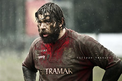 Rugby (Filippo Venturi) Tags: roma men boys sport photo foto mud rugby dirty match versus romagna ragazzi uomini sporco partita fango campionato 20110130
