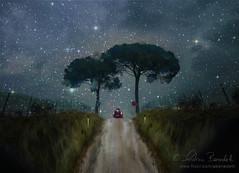 arriving on the horizon (Ąиđч) Tags: auto trees andy car alberi night stars landscape andrea andrew notte paesaggio stelle benedetti ąиđч