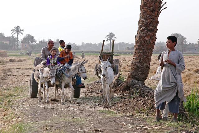 エジプト旅行 ルクソール