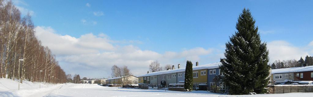 Wintery Walkway