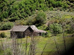 Abandoned in Colorado (saxonfenken) Tags: barn derelict abandoned shed field colorado pregamewinner thechallengefactory 7081land 7081 herowinner superhero gamewinner perpetual