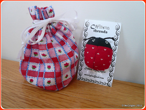 Ladybug Brooch with gift bag