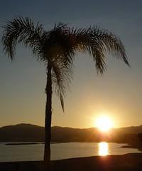 tramonto a San Bartolomeo al mare (solonanda non c' pi) Tags: sunset sea sky tramonto mare ngc cielo palme kartpostal mindigtopponalwaysontop