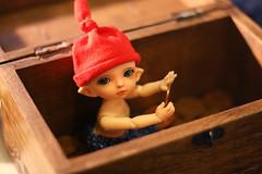 ADAD 2011 - 062/365 (Lucy-Loves?) Tags: boy zoe doll calvin pixie elf bjd custom fairyland adad pukifee
