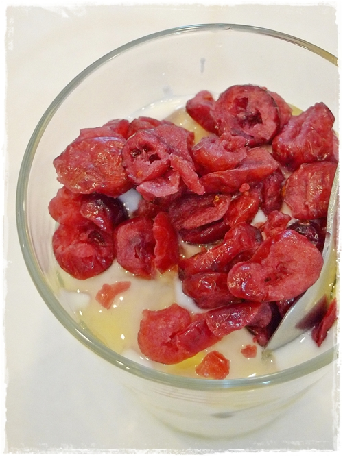 Homemade Yoghurt with Dried Cranberries
