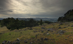 A Gray Afternoon on Mount Burdell (fksr) Tags: california clouds marincounty novato rainyweather overcastsky mountburdell