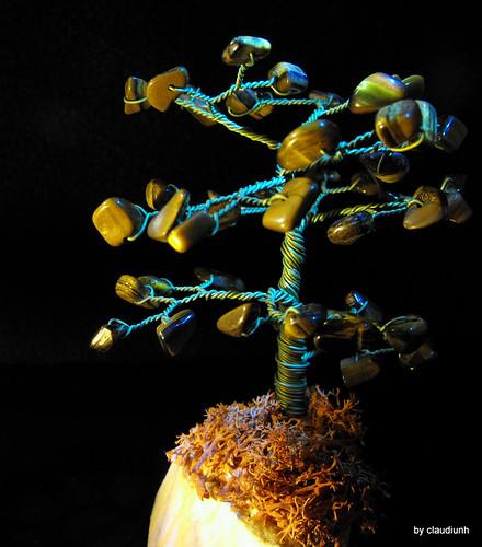 Copacelul cu fructe pietroase by claudiunh
