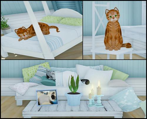 KittyCats Store 1
