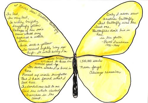 20110308-1500000ButterfliesProject-31.jpg