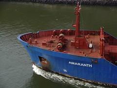 AMARANTH - IMO 7816484 (arnekiel) Tags: canal bow kiel tanker amaranth nok tankship schiffsbug shipsbow levensau 7816484