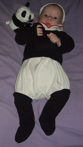panda baby 022
