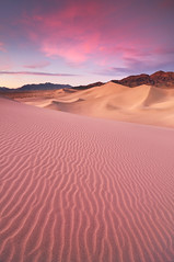 Desert Dream - Ibex Sand Dunes, Death Valley National Park (Joshua Cripps) Tags: pink sunset clouds nationalpark sand nikon glow desert dunes tripod textures remote deathvalley ripples grains ridges manfrotto ibex pristine acratech ballhead d300s joshuacripps