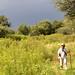 Tierfontein Day 2 050