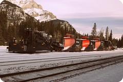 Explore (Aditi Chadha) Tags: trees winter red white mountain snow canada black girl branches sony tracks railway bluesky trains canadian banff cprail