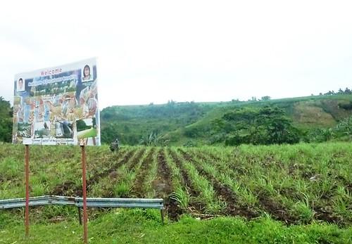 Negros -Bacolod-Savador-San Carlos (89)