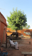 West Africa-2273