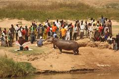 West Africa-5670