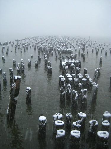 piling field