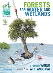 2011年世界溼地日海報,圖片來源:拉姆薩溼地公約秘書處