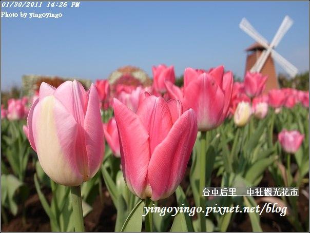台中后里_中社光觀花市20110130_R0017615