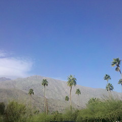 Hazy Sky over Palm Springs