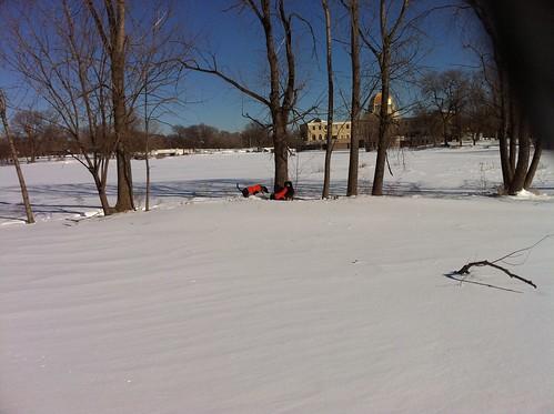 Post-blizzard walk in Garfield Park