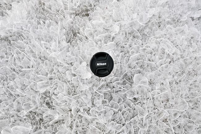 nikon on ice