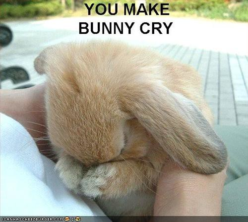 funny-pictures-bunny-is-sad