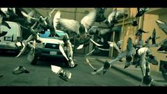 DSC_0428w (UbiMaXx) Tags: usa car movie la losangeles los interesting nikon theater downtown angeles pigeon broadway style historic frame e3 cinematic maxx 2010 d700 ubimaxx