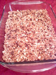 Chewy Granola Bars-Freezer Snack