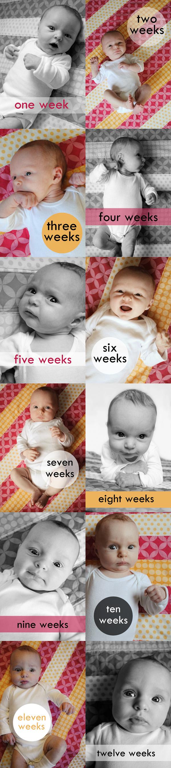 Twelve Weeks