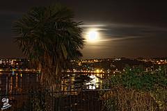 Bajo la luz de la luna (Urugallu) Tags: espaa luz canon spain agua flickr luna reflejo lunallena palmera euskadi paisvasco guipuzcoa fuenterrabia hondarribia euskalerria 50d urugallu mygearandme