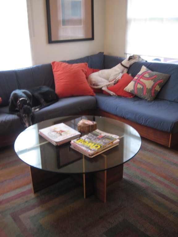 Greyhounds and new living room table