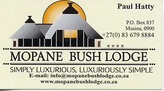Mopani Bush Lodge