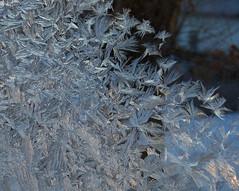 cabri11b41 Cold Winter Window Frost 2011 (CanadaGood) Tags: morning white canada color colour window frost sk saskatchewan cabri 2011 canadagood thisdecade